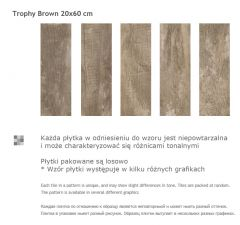 Paradyz TROPHY Brown